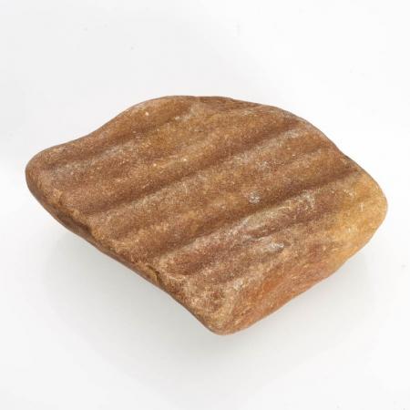 Окаменелость песчаник с отпечатком ряби  M