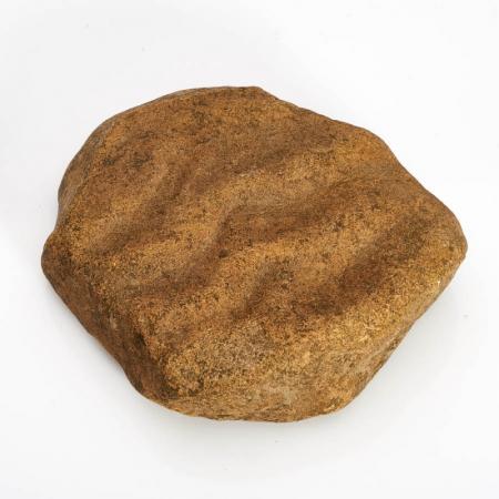 Окаменелость песчаник с отпечатком ряби  L