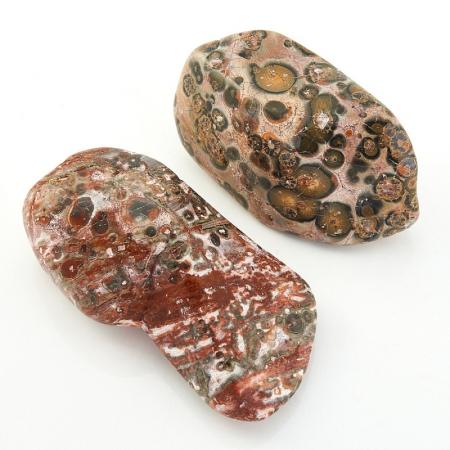 Яшма леопардовая  (3-4 см) 1 шт