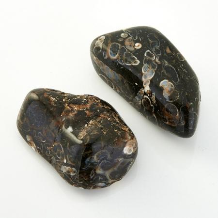 Агат черепаховый  (3-4 см) 1 шт